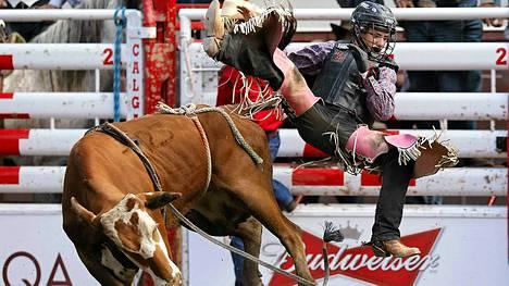 Härkä heitti junioriluokassa ratsastaneen Ryder Wrightin selästään.