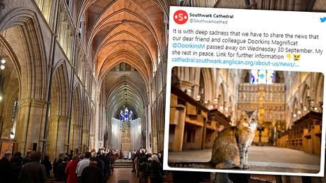Syyskuun lopulla menehtynyt Doorkins Magnificat siunattiin keskiviikkona ja haudattiin Southwarkin katedraalin puutarhaan 30 saattajan läsnäollessa. Arkistokuva.
