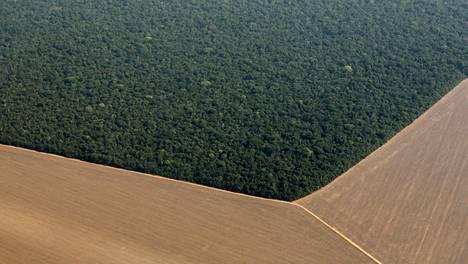 Metsää oli kaadettu uuden peltoalueen tieltä Amazonin sademetsästä lokakuussa 2015.