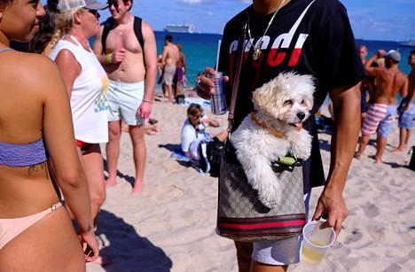 Mies oli ottanut koiransa mukaan rantaelämästä nauttimaan.