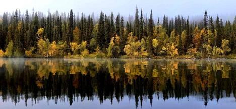 Pallas-Ylläksen kansallispuisto Marja-Leenan kuvassa.