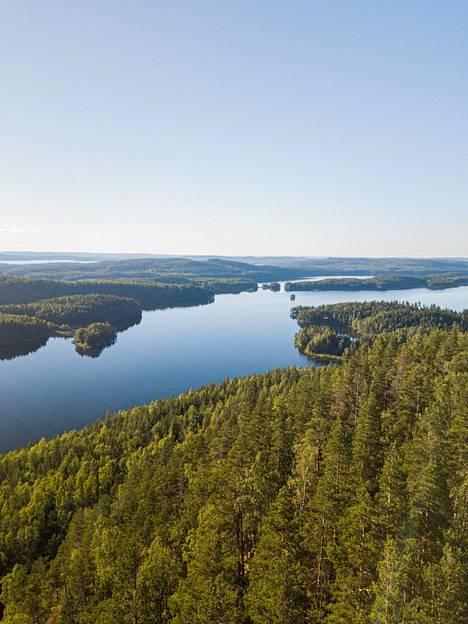 Kammiovuoren laelta avautuu kaunis maisema Päijänteelle asti.