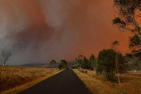 Paksu sumu peittää taivaan Uudessa Etelä-Walesissa.