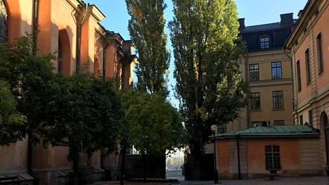 Vaihtamalla perinteisiä reittejäsi, löydät Tukholmastakin uutta.