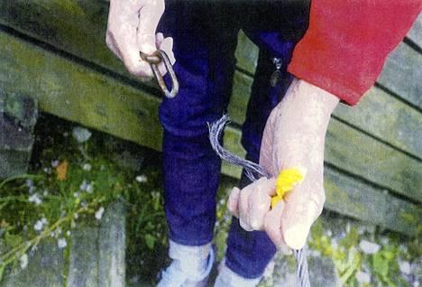 Teräsvaijeri ja kettinki, johon vaijeri oli kiinnitettynä.