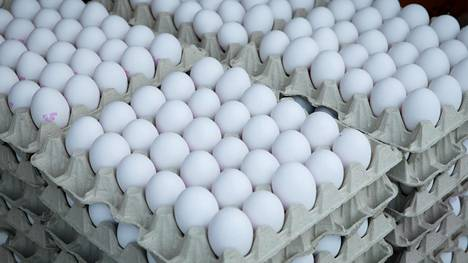 Onko muna päivässä liikaa vai hyväksi? Tutkimus löysi selvän yhteyden maailman yleisimpiin sairauksiin