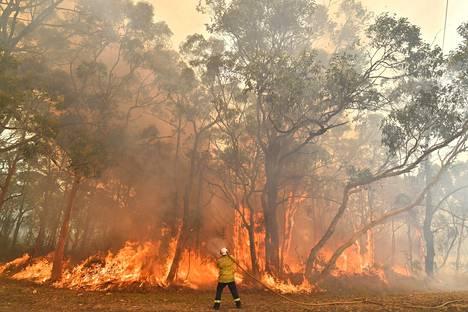 Palomiehet yrittivät estää maastopalon leviämistä asutusalueelle noin 100 kilometrin päässä Sydneystä tiistaina.