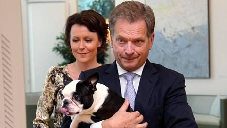 Presidentti Sauli Niinistön ja rouva Jenni Haukion Lennu-koira kuvattuna Mäntyniemessä joulukuussa 2012.