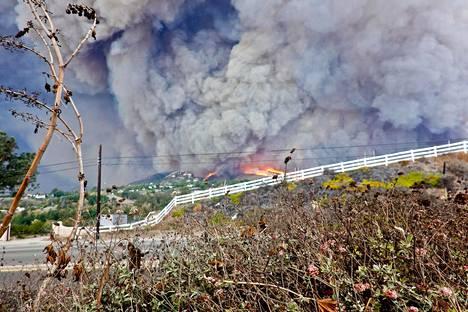 Malibusta paloi yli 1600 taloa. Ketolan kotikadulta taloja paloi 37.