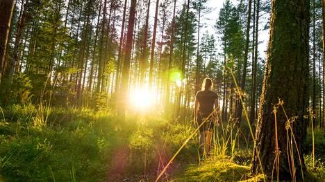 Suomi sijoittui sijalle kolme vertailussa, jossa tarkasteltiin rinnakkain eri maiden kansalaisten etuuksia.