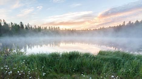 Monet suomalaisten lempisanoista liittyvät luontoon.