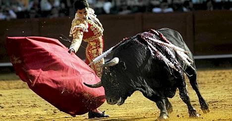 Kataloniassa matadorit iskevät miekkansa härkiin viimeistä kertaa sunnuntaina – ellei lakia vielä muuteta.