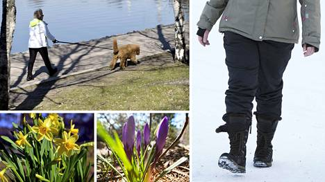 Kävellessä voi vaikka ikään kuin skannata kehoa, miettiä, millä tavalla jalkapohja liikkuu.
