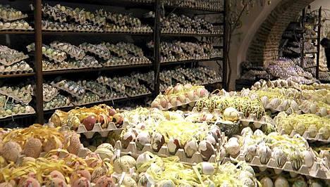 Salzburgin munakaupassa on muna poikineen.