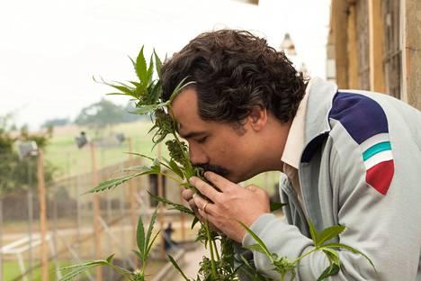 Netflixin draamasarja Narcos kertoo Pablo Escobarista, joka oli rikollisuransa huipulla vastuussa jopa 80 prosentista maailman kokaiinikaupasta. Sarjassa Escobaria näyttelee näyttelijä Wagner Moura.