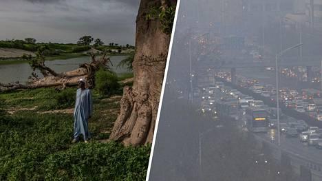 Metsittäminen on onnistunut hyvin monissa maissa ja monilla alueilla. Ilmansaasteet ovat merkittävä tekijä luonnon köyhtymisen taustalla. Vasemmassa kuvassa mies osallistumassa metsittämisprojektiin Sudanissa, oikealla ilmansaastesumua Pekingissä, Kiinassa.