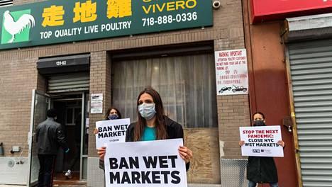 Eläinoikeusaktivistit New Yorkissa vaativat elävien merenelävien kaupittelun lopettamista.