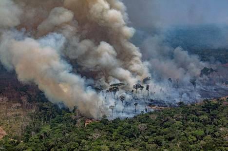 Sakea savu peittää alleen suuria alueita ja aiheuttaa myös suuret pienhiukkauspäästöt.