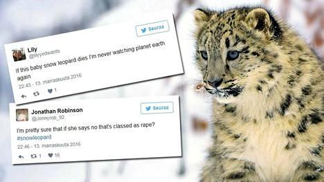 Lumileopardin parittelukohtaus kauhistutti BBC:n Planet Earth -ohjelman katsojia.