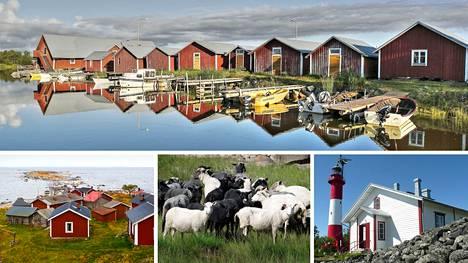 Suomen kesä on parasta aikaa tutustua kotimaan matkailun helmiin.