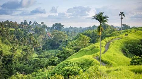 Suomalaistenkin suosikkikohde Bali on uuden listauksen mukaan yksi maailman kauneimmista paikoista.