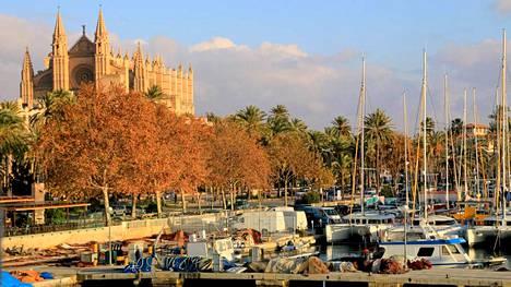 Can eduardo -ravintolasta on upea näkymä La Seu -katedraalille ja purjenevesatamaan.