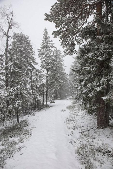Maisemat muuttuivat talvisiksi.