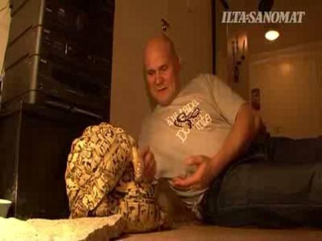 Vuoden lemmikki, Manu-kilpikonna