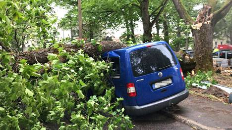 "Juhannusmyrsky tekee tuhoa myös Virossa – puu repesi Teron, 41, silmien edessä ja tuhosi auton: ""Kuului vain kova rysähdys"""