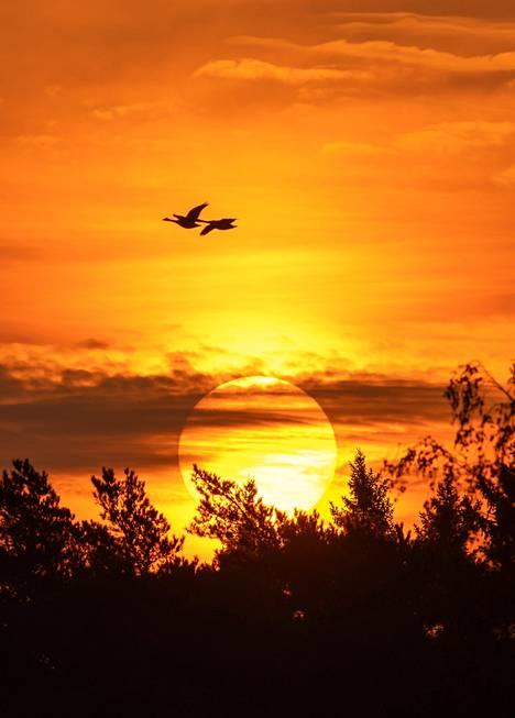 """""""Syyskuussa Kalifornian metsäpalojen pienhiukkaset värjäsivät auringon punaiseksi. Muutaman päivän aikana kuvasin auringonlaskuja ja nousuja, jotka olivat erityisen kauniita ja ilmeikkäitä surullisesta syystä."""""""
