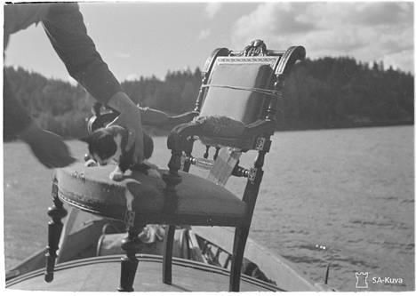 Kissaakaan ei sovi unohtaa saarta evakuoidessa. Tulolan saari 1944.09.12