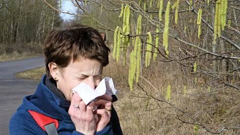 Sekä allergiaan että flunssaan liittyy tukkoisuutta, vuotava nenä ja väsyneisyyttä. Allergiasta kärsivät tietävät usein jo ennestään, että oireet alkavat keväisin, kun puut alkavat kukkia.