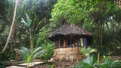Mökki metsässä on hyvä haaveilun kohde juuri nyt, kirjoittaa matkatoimittaja Mira Jalomies.