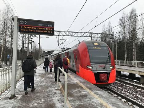 Pietarin keskustan ja Repinon sekä Terijoen välillä liikennöi useita paikallisjunia. Lastotshka-juna on laadukkain.