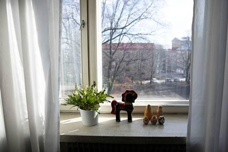 Ikkunanpesun maailmanmestarilla on omat vinkkinsä ikkunanpesuun.