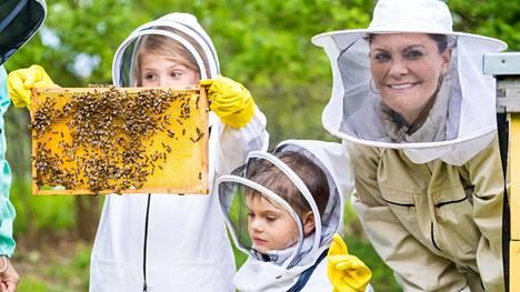 Prinsessa Estelle uskaltautui nostamaan yhden kennon mehiläispesästä.