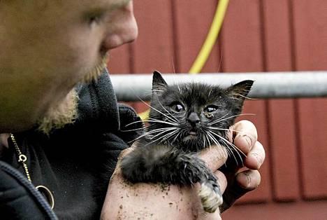 Kissan pelastaminen päättyi onnellisesti Göteborgissa.