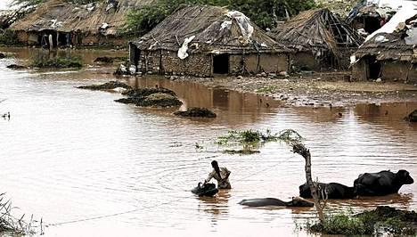 Tulvat ovat koetelleet Tawi-joen varrella eläviä ihmisiä.