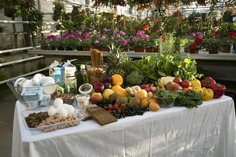 Olet mitä syöt -ohjelmassa Pippa Laukka ohjaa osallistujia kohti terveellisempiä elämäntapoja.