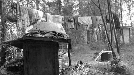 Rappioalkoholistit loivat omat tapansa ja lakinsa soiselle kaatopaikalle. Siellä he esimerkiksi pesivät pyykkinsä.