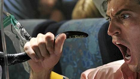 Snakes on a Plane -leffassa näytettiin, miten käy, jos saa lentokaveriksi lastin myrkkykäärmeitä.