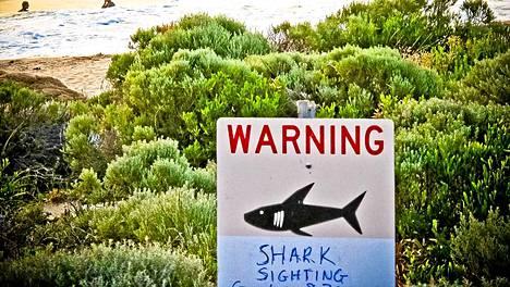 Haista varoitettiin Prevelly Beach -rannalla Australian Gracetownissa aiemmin marraskuussa.