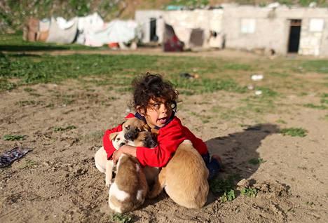 Ihmisen parhaat ystävät. Palestiinalaistyttö leikki koirien kanssa kotinsa pihamaalla Khan Younisissa Gazassa.