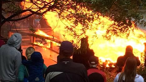 Kokko riistäytyi käsistä Tampereella – laituri kärähti, palokuntaa tarvittiin