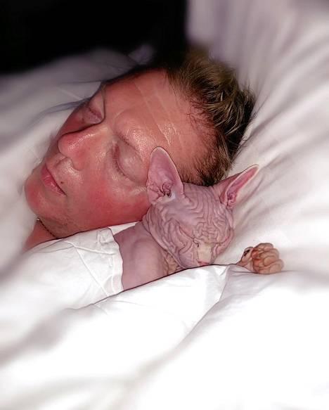 Lucky boy -kissa nauttii Vesan vieressä nukkumisesta.
