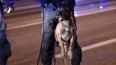 Poliisi ja poliisikoira Helsingissä 6. joulukuuta 2018.