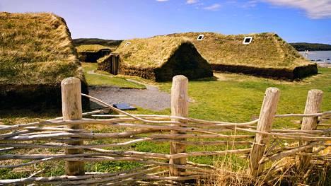 Viikinkihistoria kiinnostaa kanadalaisia. Kuvassa rekonstruoituja viikinkirakennuksia  L'anse Aux Meadowsin alueella.