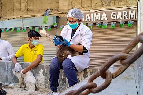 Pakistanin eläintorilta pelastettiin häkeissä pidettyjä eläimiä, kuten kissoja, koiria ja jäniksiä.