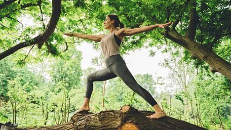 Metsäjoogassa kantoja ja kiviä voi hyödyntää jooga-asennoissa.