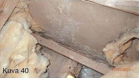 Kattoikkunan kohdalla kuilu- ja yläpohjarakenteissa näkyi selkeitä kosteusvaurioita.